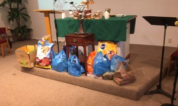 pic of dog food donations